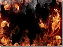 огонь молнии (13)