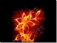 огонь молнии (15)