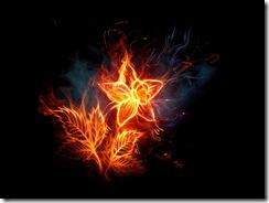 огонь молнии (16)