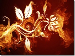 огонь молнии (19)