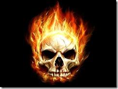 огонь молнии (31)