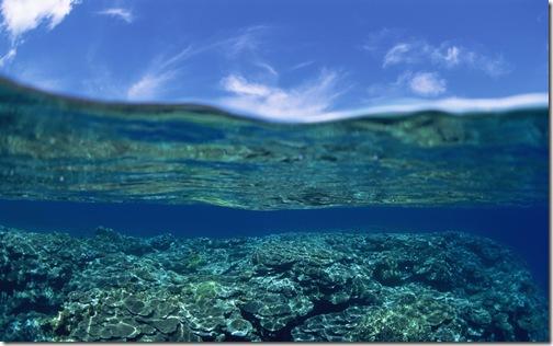 обои море (7)
