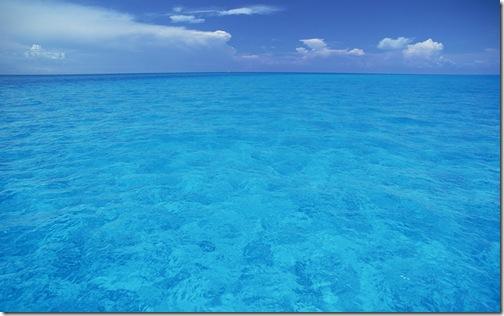 обои море (9)
